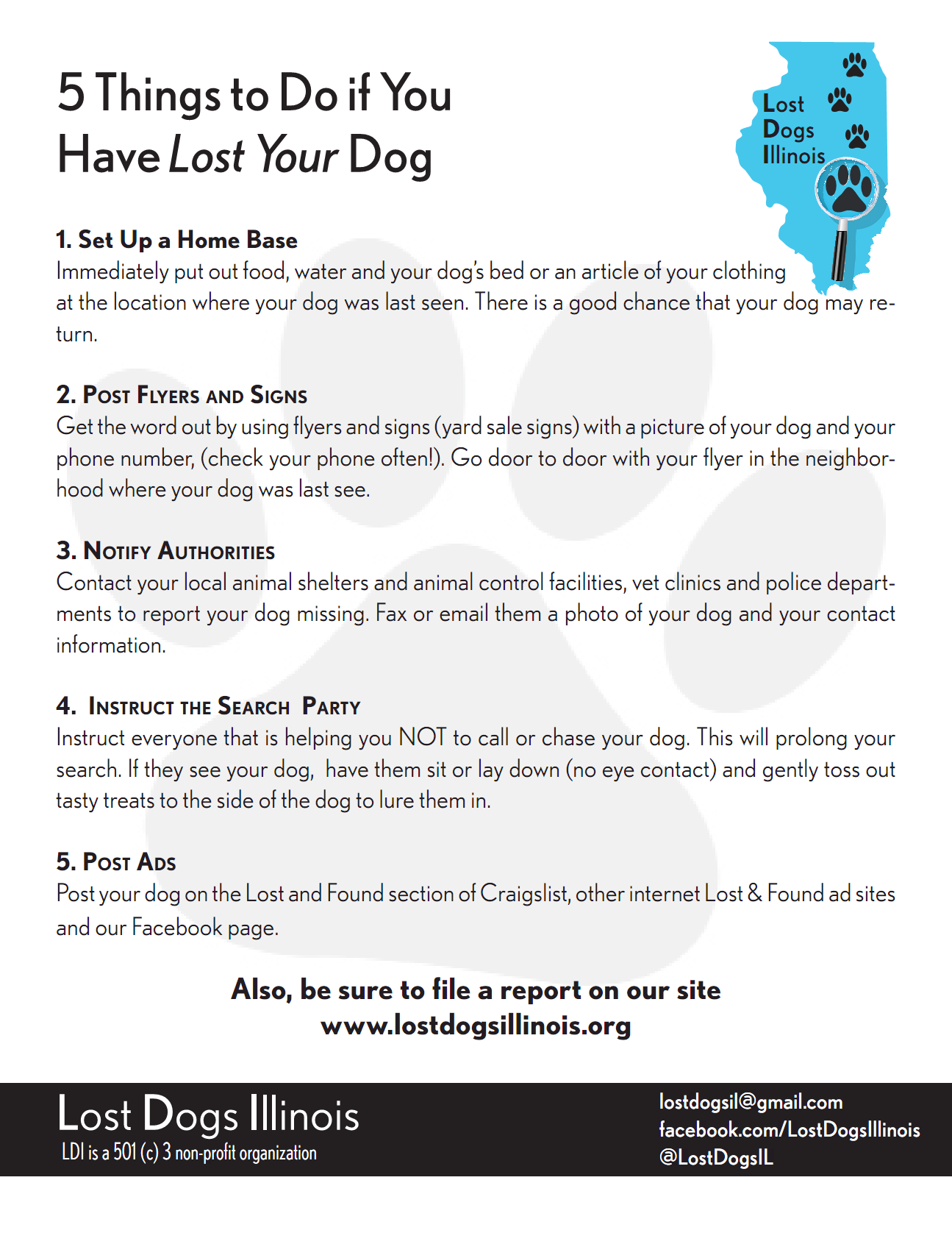 Pin By Lost Dogs Illinois On Other Tips And Articles Losing A