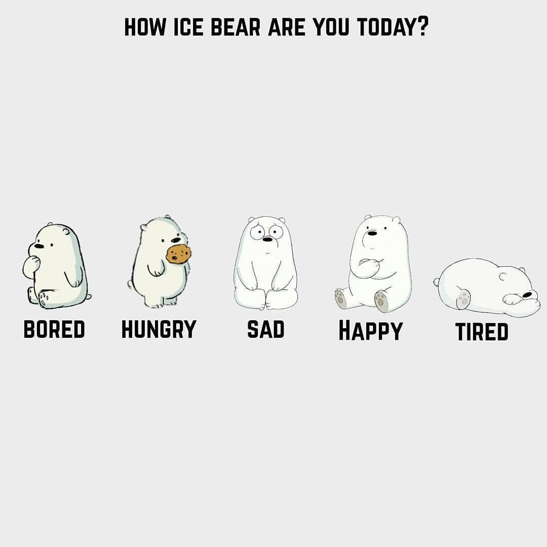 Ice Bear Quotes 1