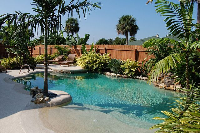 Backyard Pool With Beach Entrance This