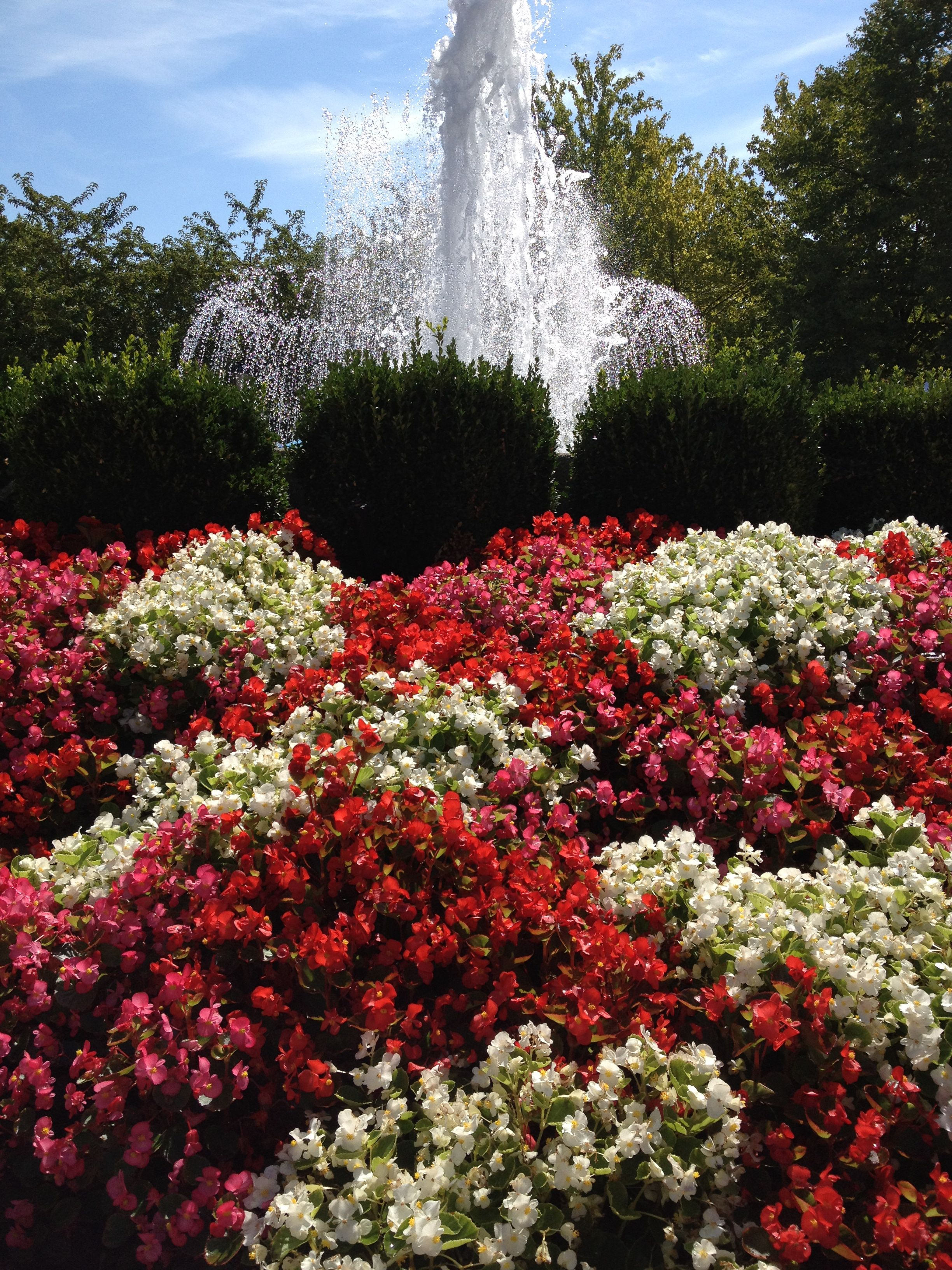 Arlington heights il park arlington heights places to
