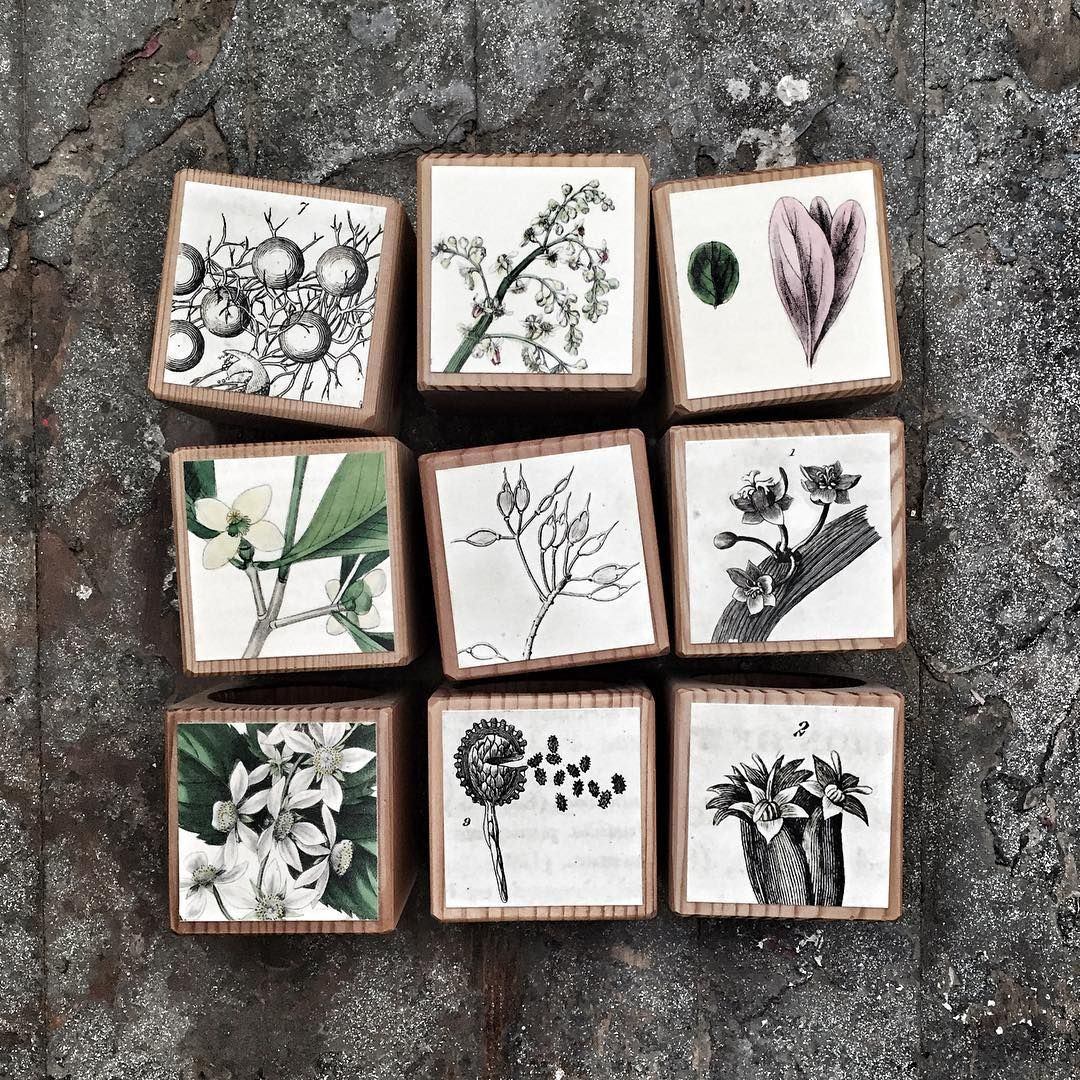 Botanical candle blocks made from floor joists from Philadelphia homes built in the 1800s finished with antique botanical drawings (of the same era!) #magic
