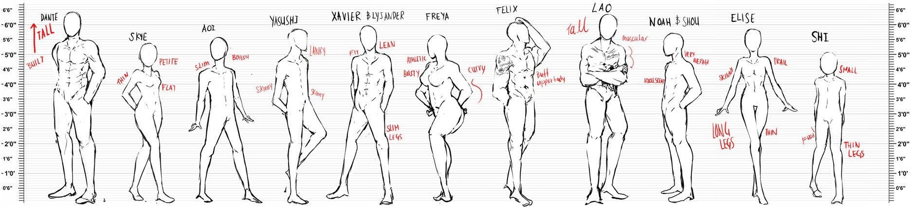 Body Type And Height Reference By Calvariae In 2019 Body