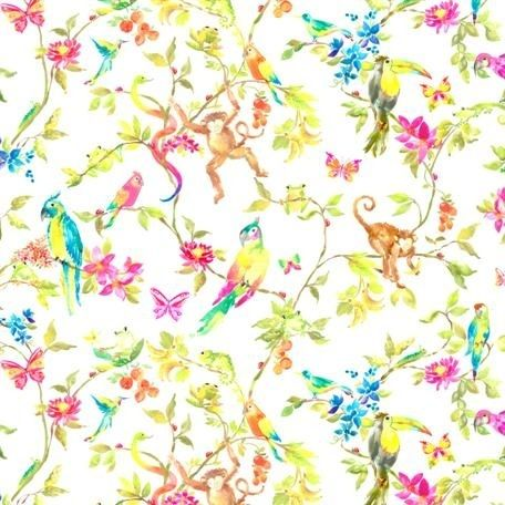 perroquet carnival wallpaper collection storybook wall art