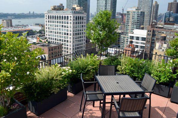 Co Op And Condo Roof Garden New York City Ny Ny By Jeffrey Erb Apartment Garden Roof Garden Design Roof Garden