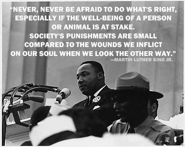 In Honor Of Mlk Jr 3 It S Amazing What One Man Can Do And What
