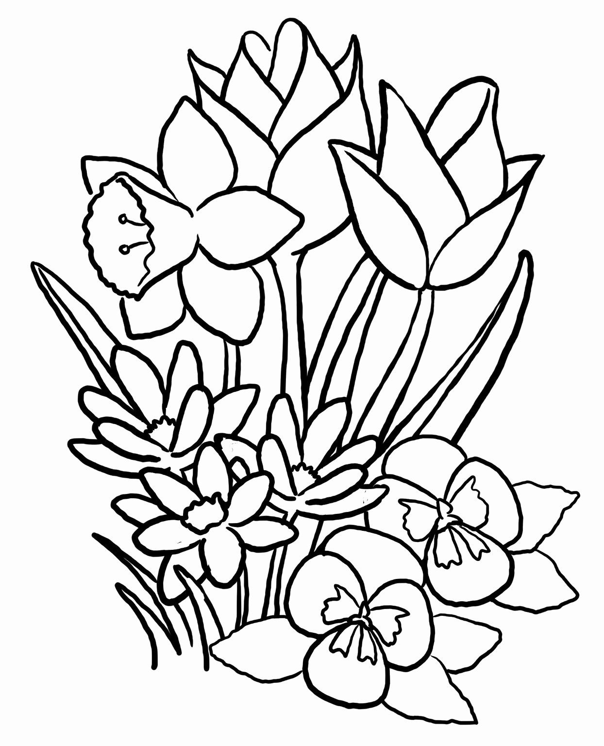 Spring Flowers Coloring Pages Printable Lovely Spring Coloring