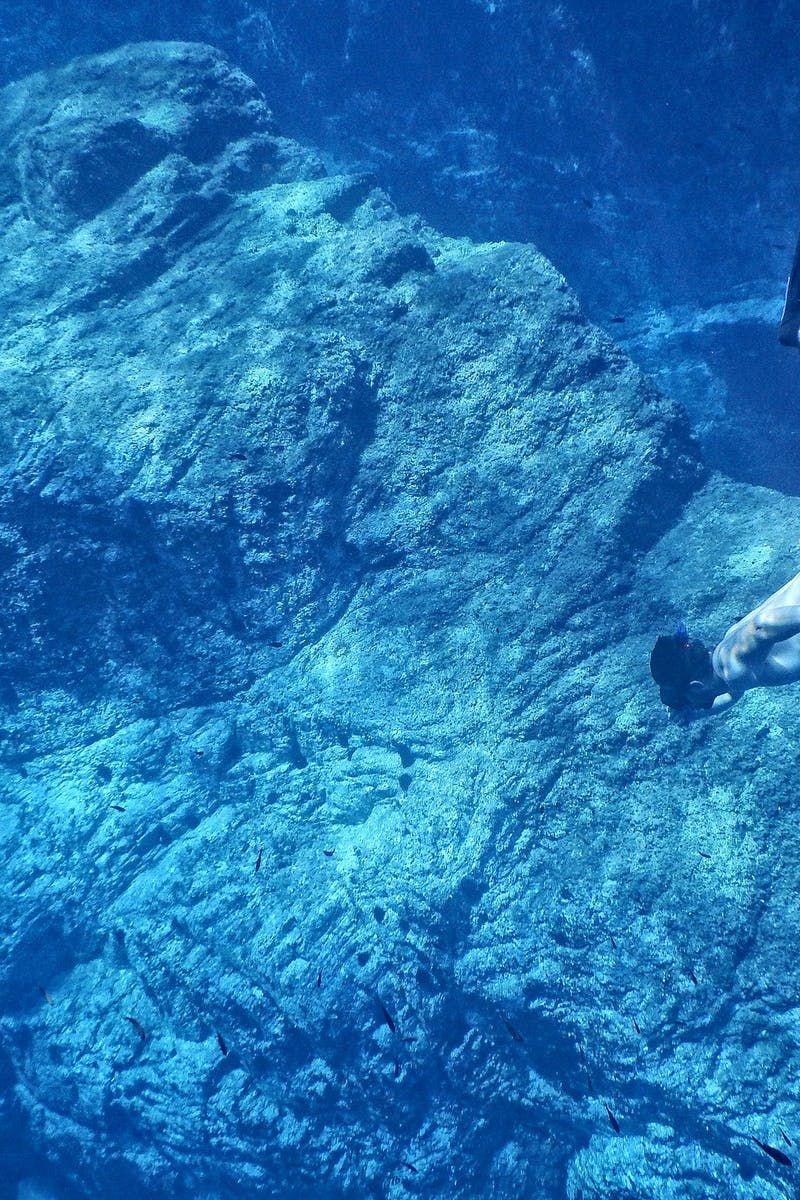 Free download of this photo: https://www.pexels.com/photo/adventure-corals-diver-diving-271539/ #sea #nature #man
