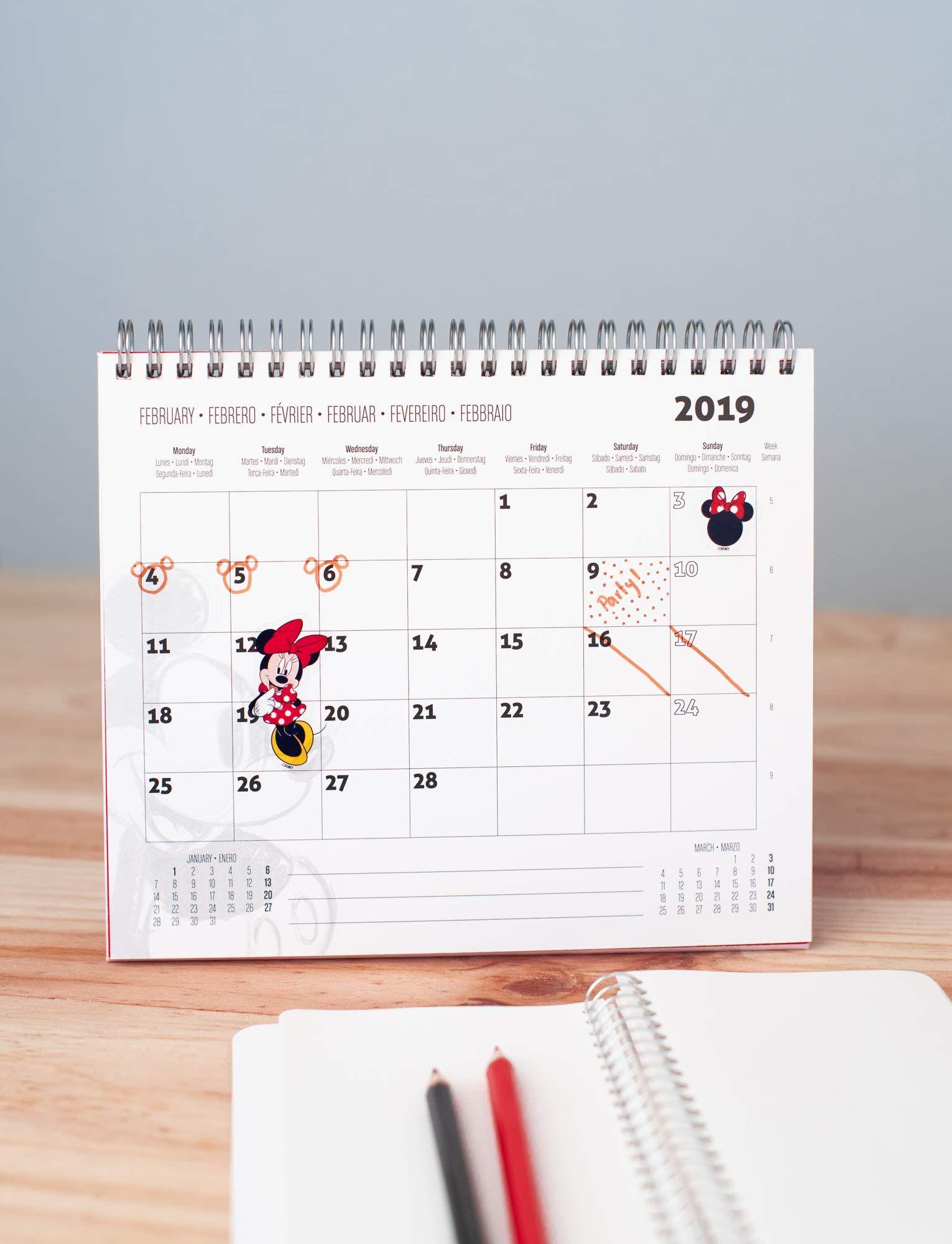 "10 x 15 cm A6 Campustimer Agenda settimanale 2018//2019 /""Pastel Dream/"""