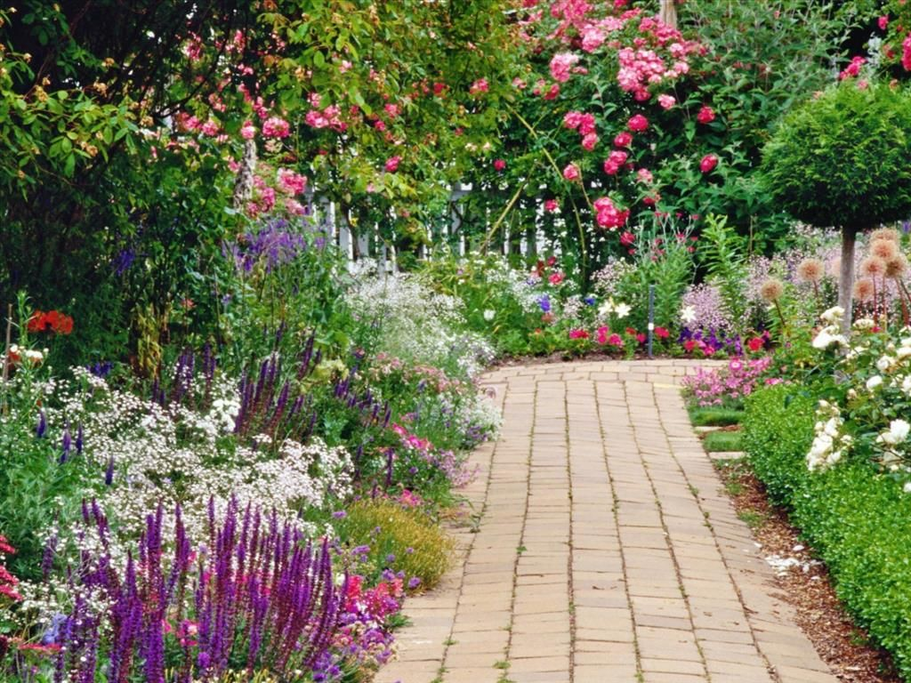 Telecharger Gratuitement Ce Fond D Ecran Jardin Fleuri Pinterest