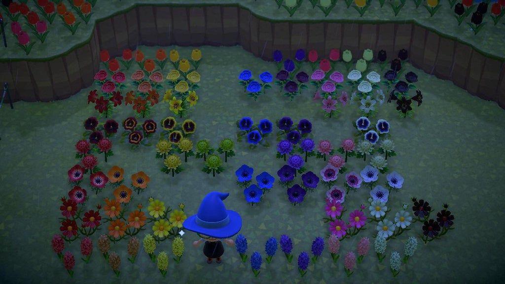Full Flower Color Spectrum!! (Gold Rose will be added