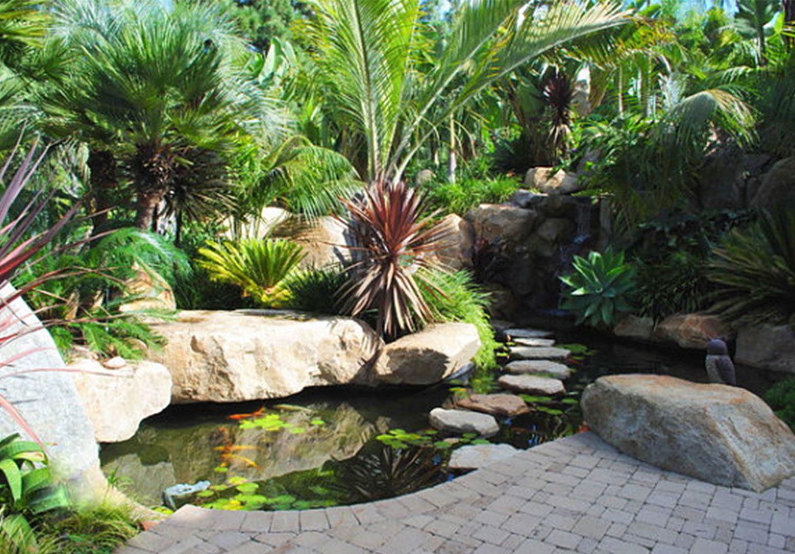 50 bsta iderna om Fish pond for your gardens p Pinterest