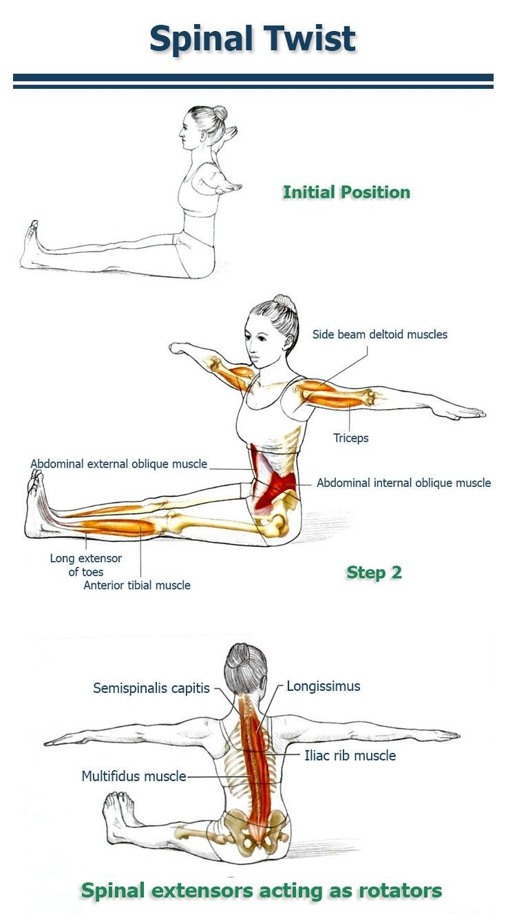 This Simple Exercise Will Cut in Half Your Back & Spine Injury Risk ...