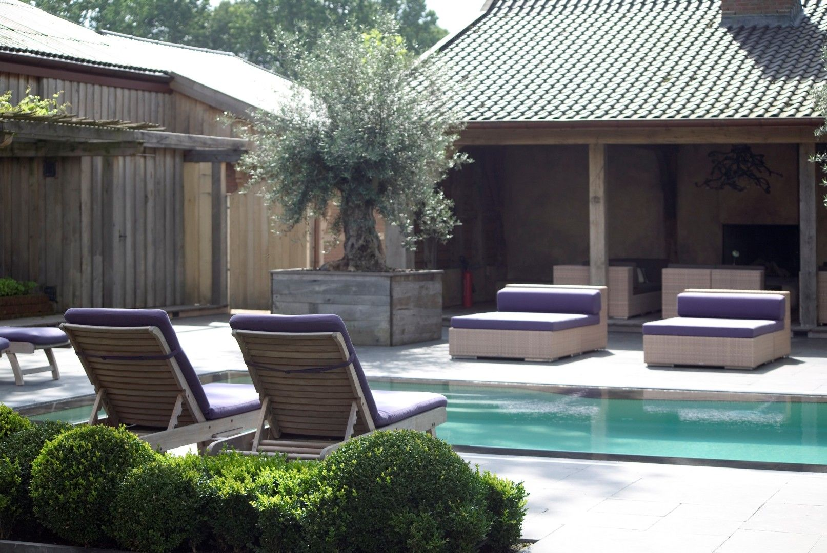 Mediterrane tuin winterswijk pools pinterest outdoor gardens