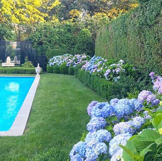 Eye Candy Pinterest Favorites This Week The English Room Pool Landscaping Swimming Pool Landscaping Amazing Swimming Pools