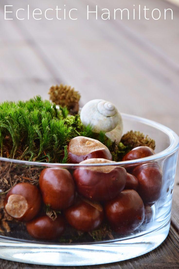 Herbstdeko aus dem Wald. Deko Herbst Tisch. DekoIdee mit natürlichen Materialien dekorien Dekoration, Herbst, Kastanien, Moos, Lärche, Buchecker, #herbstdekotisch