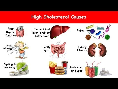 Reasons For High Cholesterol Levels