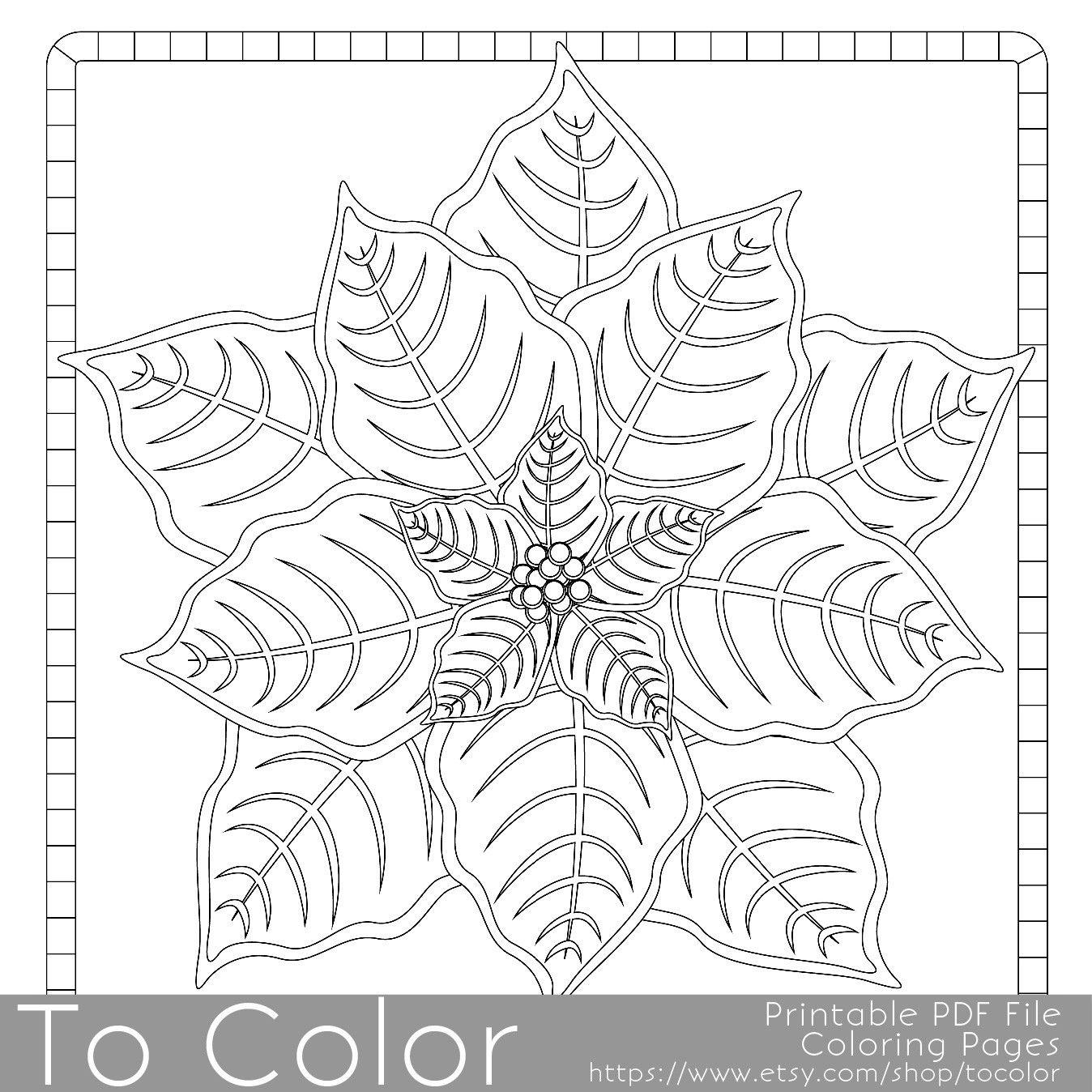 This Christmas Poinsettia Coloring Page For Adults Has A Detailed