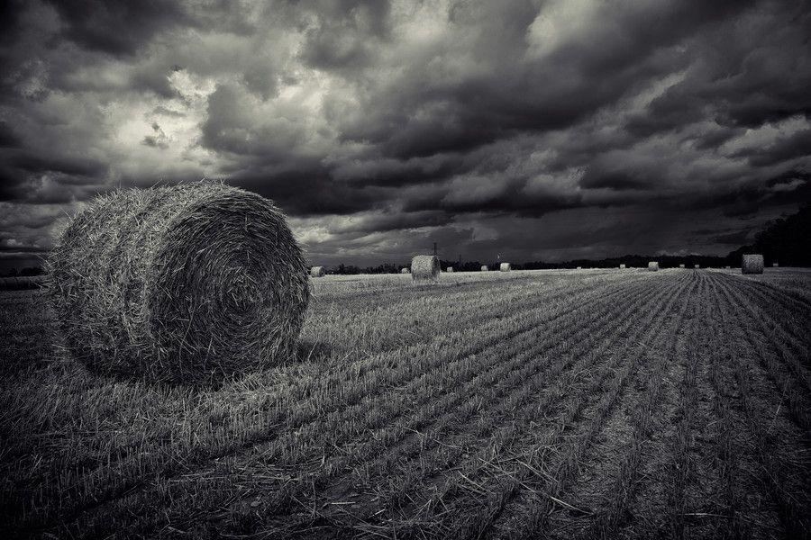 Photo Out of Muskoka by Roland Shainidze on 500px