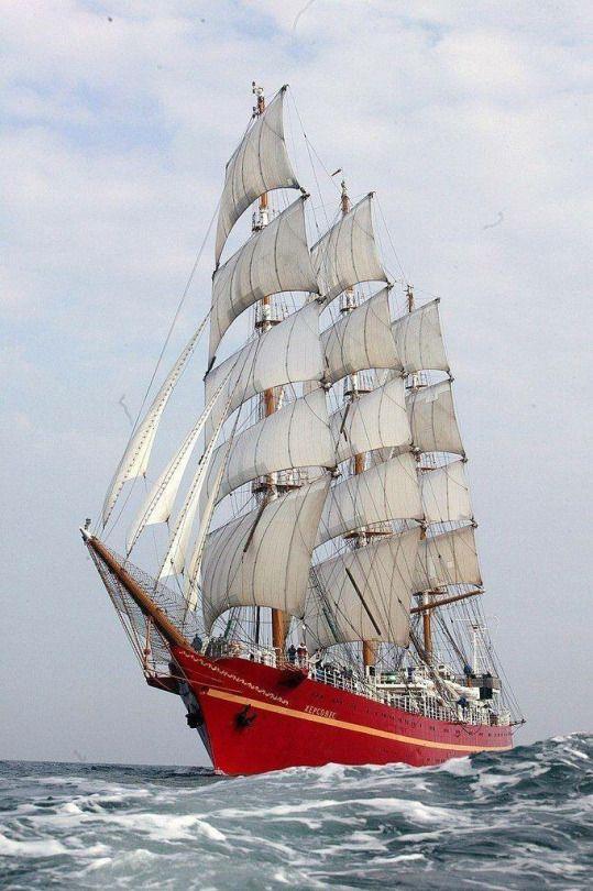 SeasSailsShips