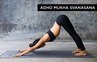 adhomukhasvanasana  yoga poses yoga poses for