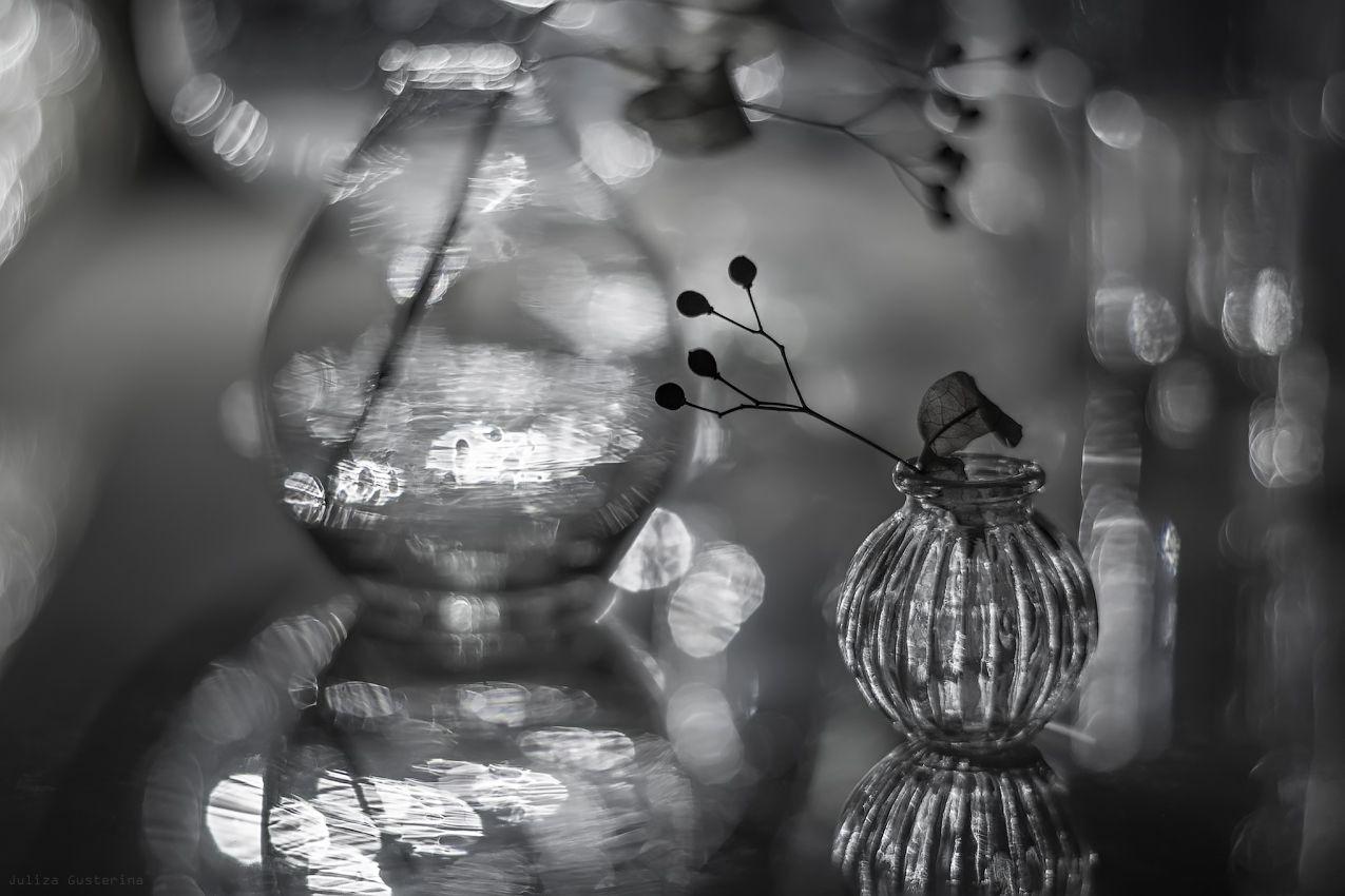Как фотографировать через мокрое стекло натюрморт