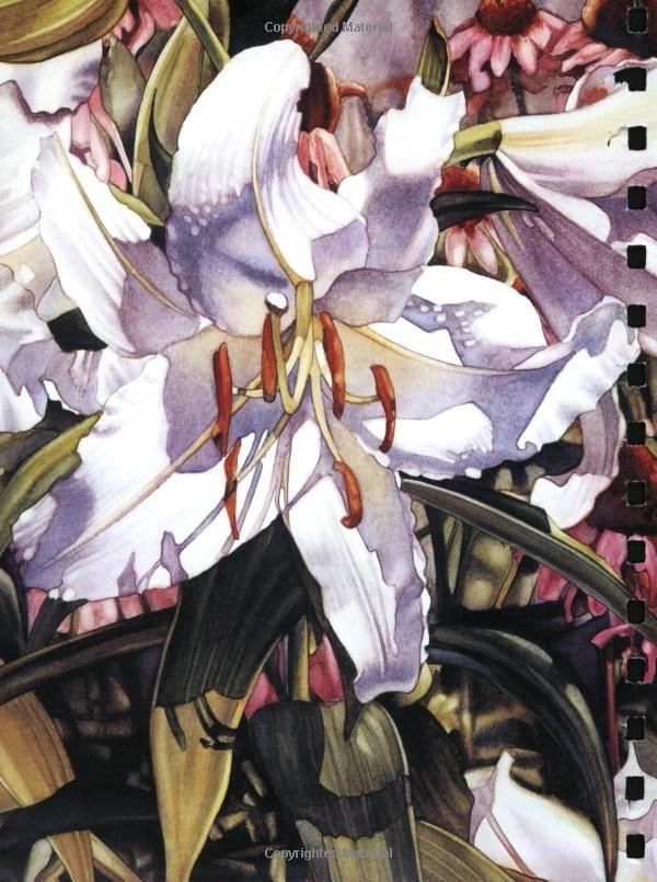 Amazing Grace Flower Watercolour Painting Art Print By