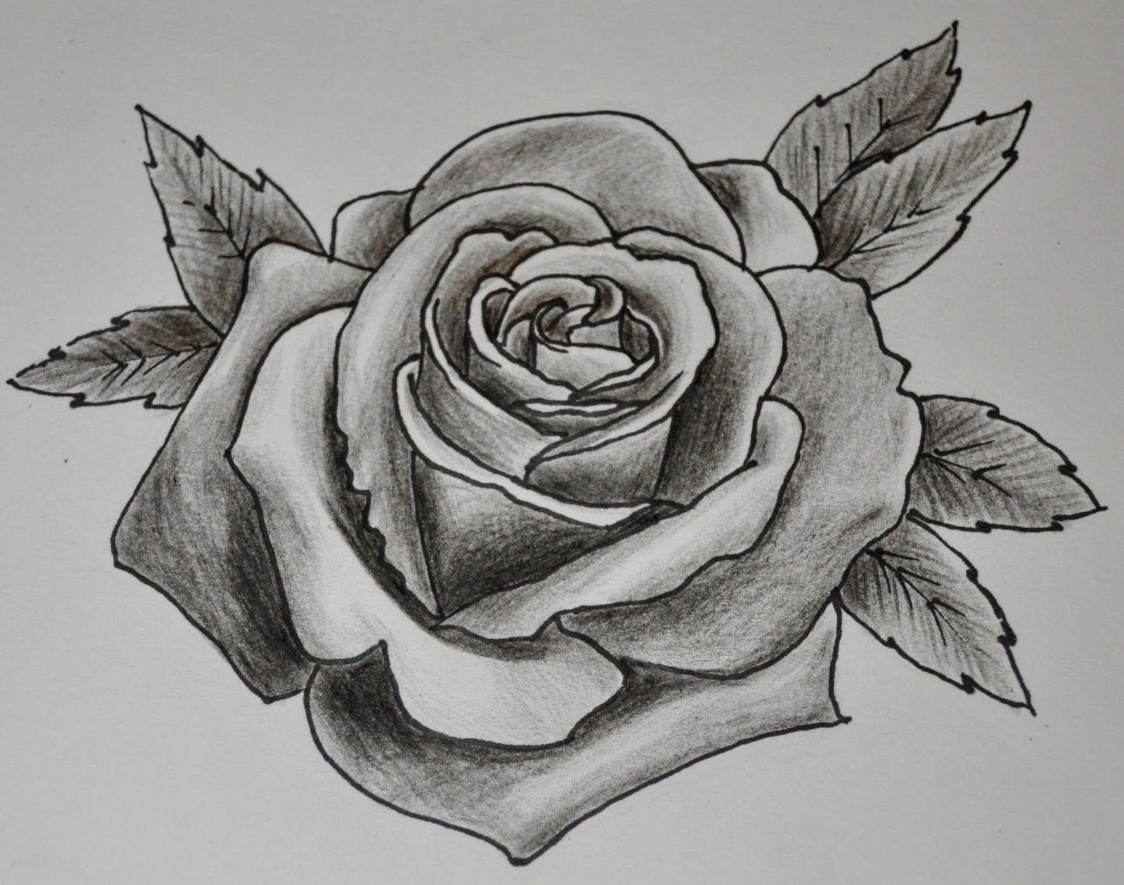 drawings of roses - HD1600×1260