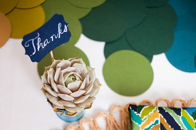 Succulents are an easy way to dress up your table for Thanksgiving.