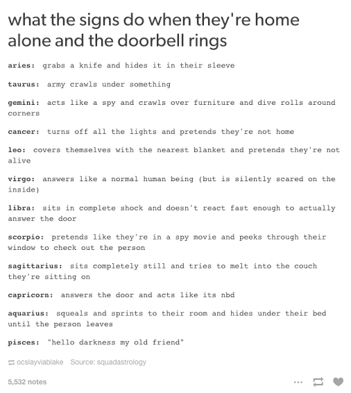 What The Signs Do When They Re Home Alone And The Doorbell