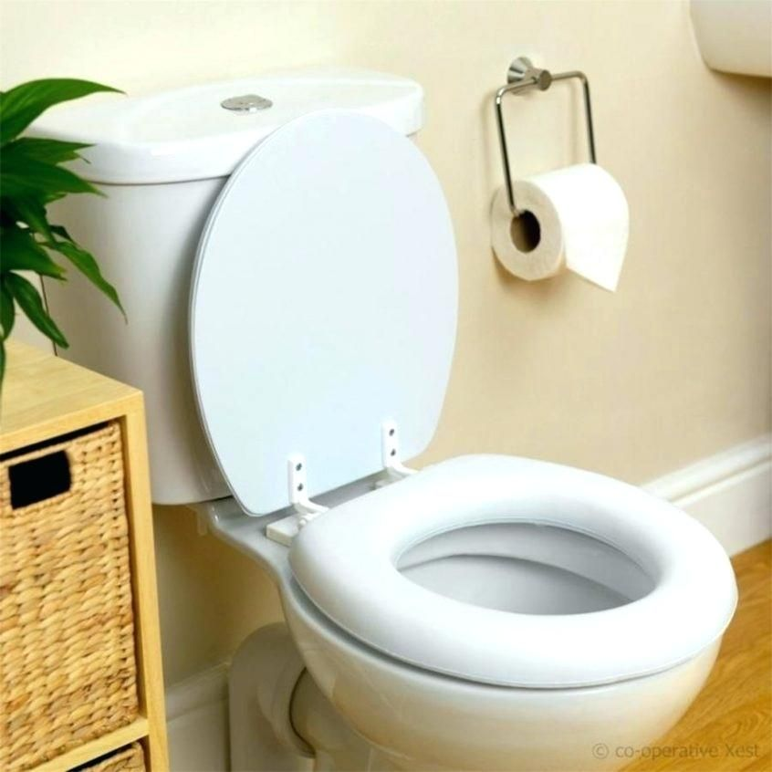 Best Padded Toilet Seats In 2020 Top Models Reviewed Toilet Toilet Seat Bathroom Lighting Design