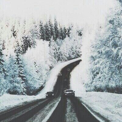 snow, winter, and road Bild