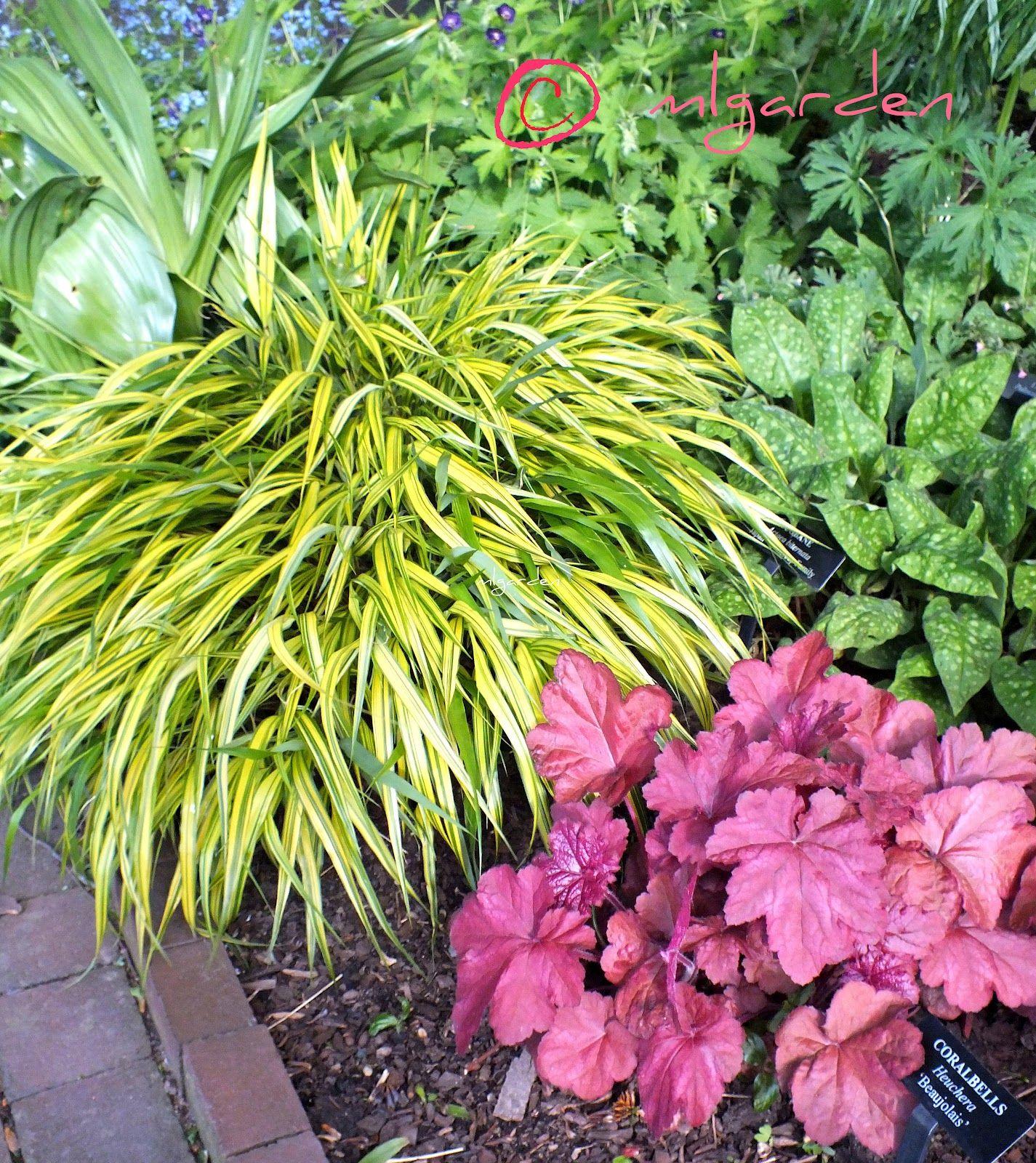 Zone 5 Perennial Flower Bed Design Ideas Garden Design Ideas