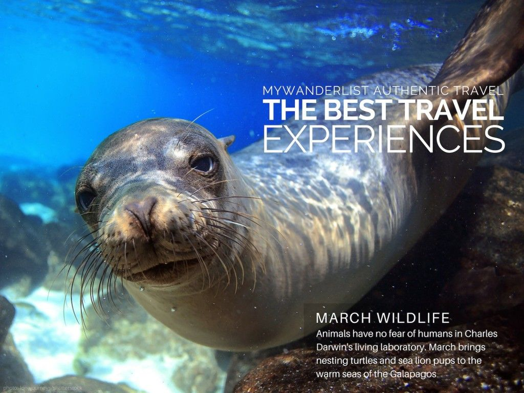 New The Best March Travel Experiences 2015 Travel