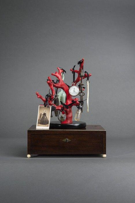 Mark Dion – Galerie Nagel Draxler – Art
