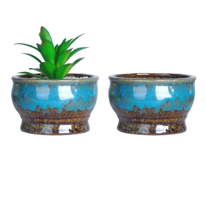 cute flower pots for succulents