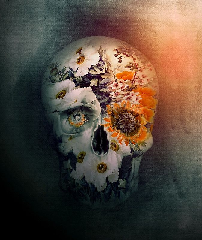 Skull Still Life II by Riza Peker via @redbubble  #skull #digitalart #homedecor #art