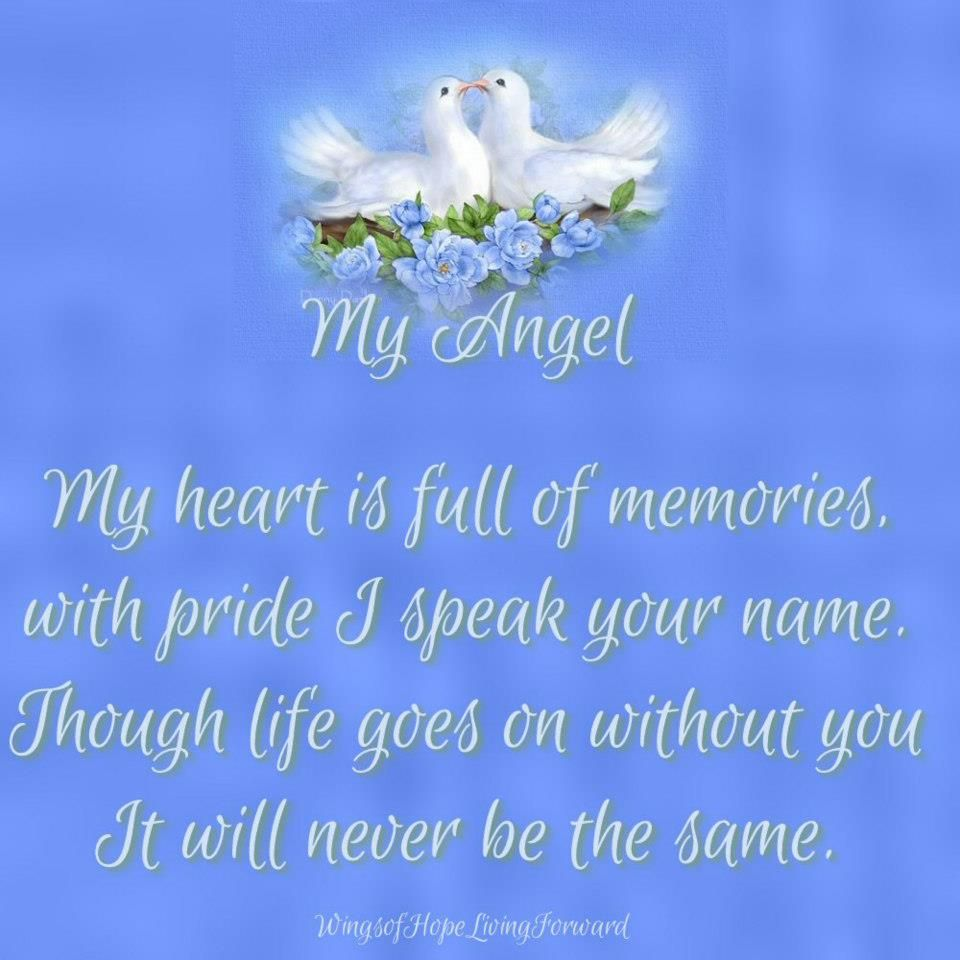 Heaven Quotes For Loved Ones Loss Of Loved Ones  In Memory Of People I Love  Pinterest