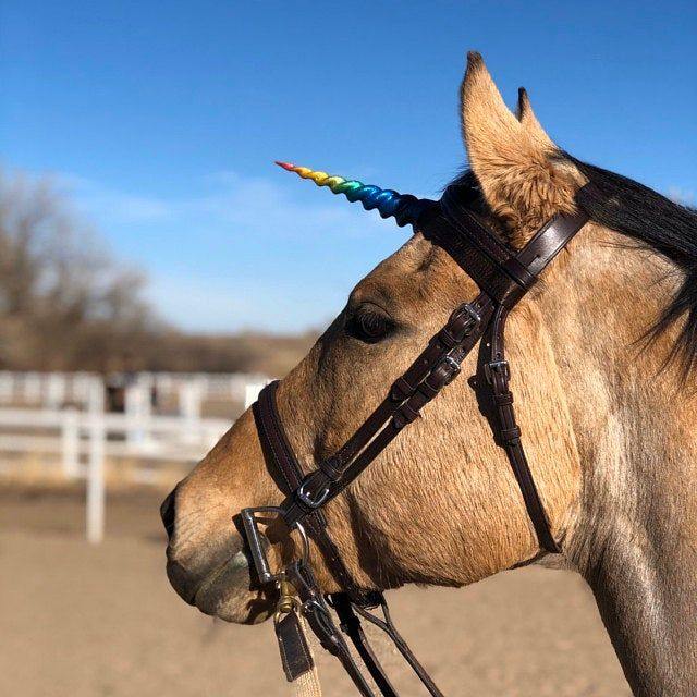 Unicorn Horn Headband / unicorn headdress headpiece costume / realistic glitter plastic unicorn horn for adults / pastel goth kawaii cute