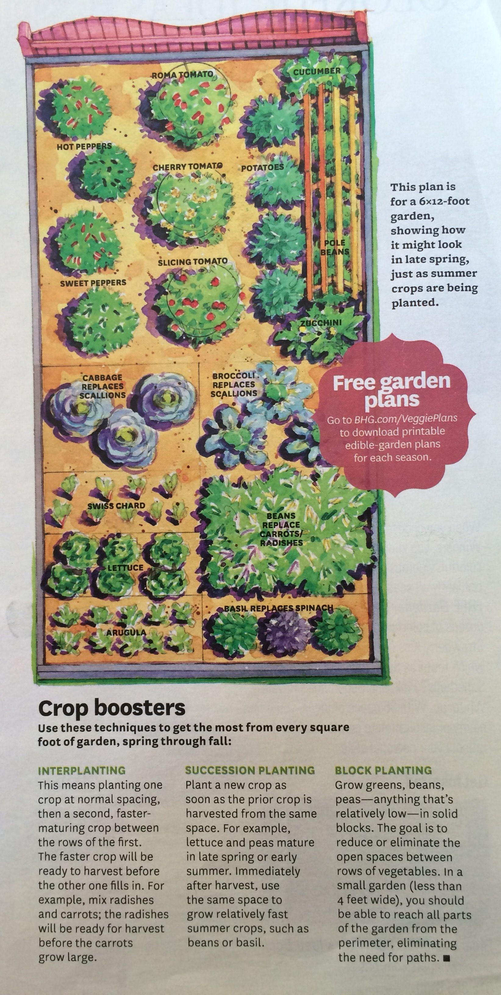 Veggie garden inspiration  x vegetable garden planBHG  Garden Inspiration  Pinterest