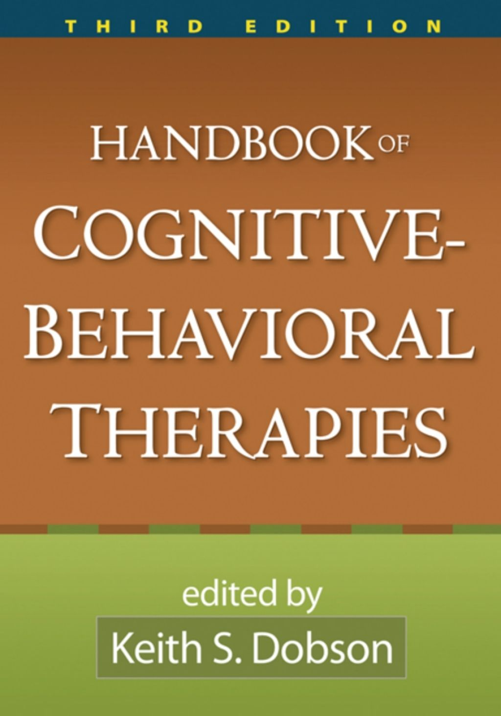 Handbook Of Cognitive Behavioral Therapies Third Edition