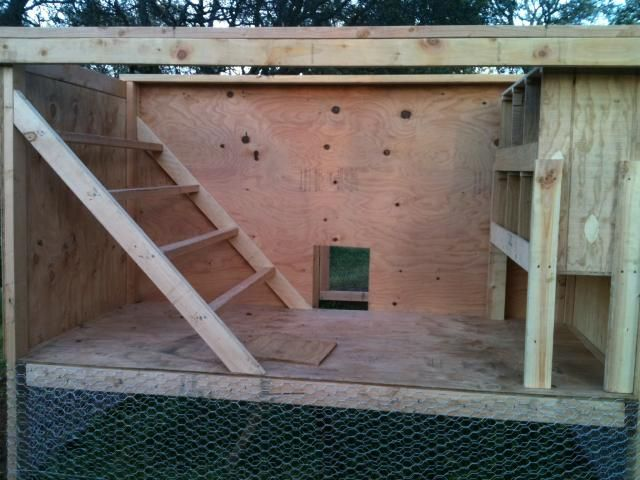 Inside Chicken Coops | ... .com/forum /uploads/92957_inside_chicken_coop_early_stages.