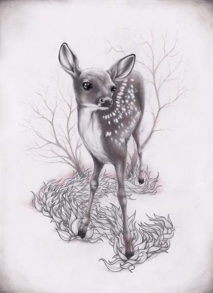 fawn illustration | fawn # animal # illustration | Ideias ...
