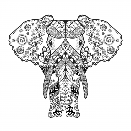 African Elephant Coloring Page Coloring Books Elephant Coloring