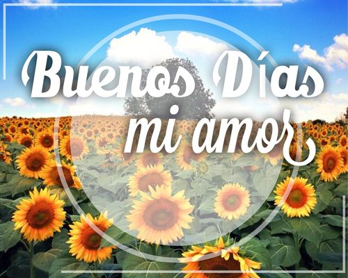 Image result for good morning in spanish images | Good ...