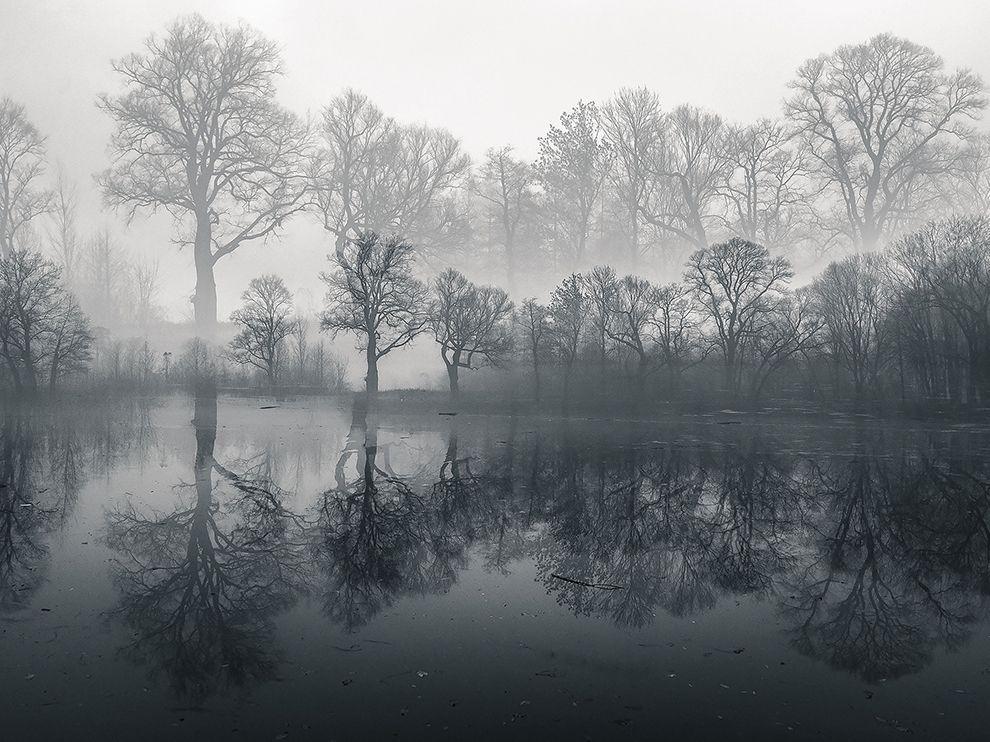 Misty Morning Fog  Photograph by Malgorzata Walkowska, National Geographic