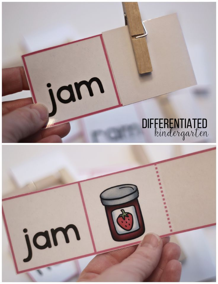 A Freebie Plus Organizing and Differentiating Independent Self ...