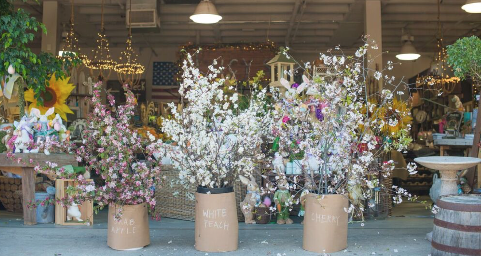 Beautiful dogwood and white peach branches make for beautiful spring decor!