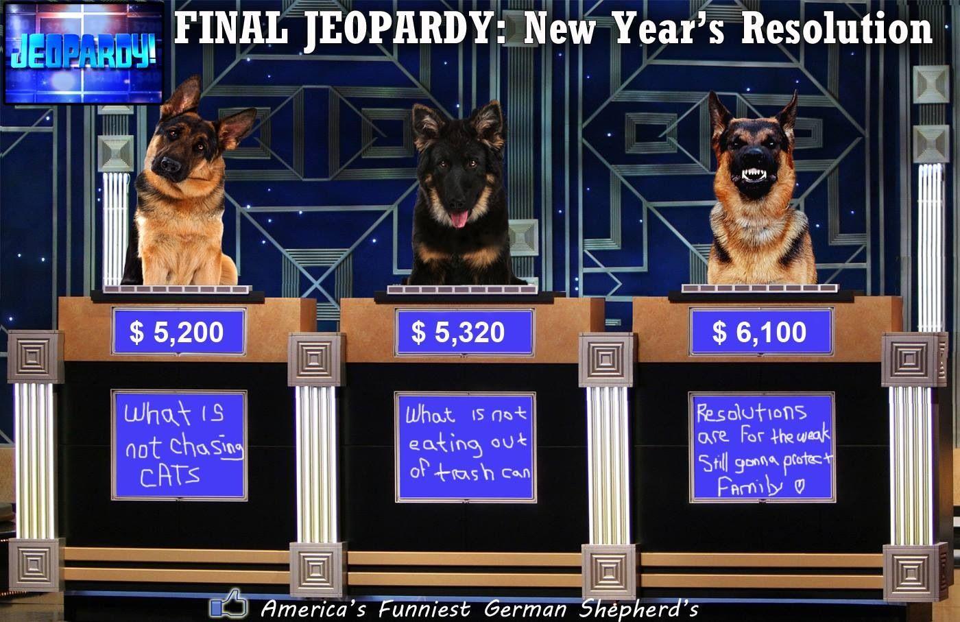Love This Happy New Year German Shepherd Funny German Shepherd