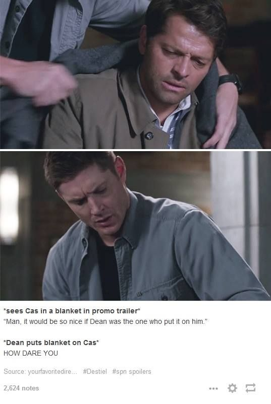 Protective Dean is the best.