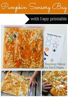 Pumpkin Sensory Bag for Preschool (+ Free Printable!)